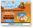 BlogHer Pop-Tarts Thanksgiving Banner Ad 160x600